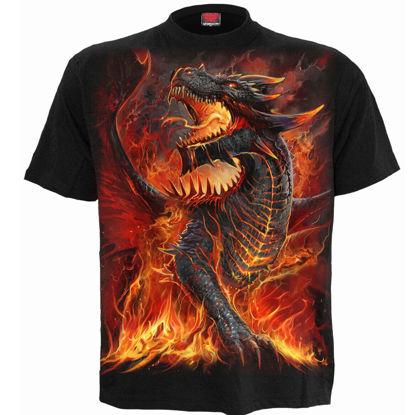 Imagine TRICOU DRACONIS – T-Shirt Black